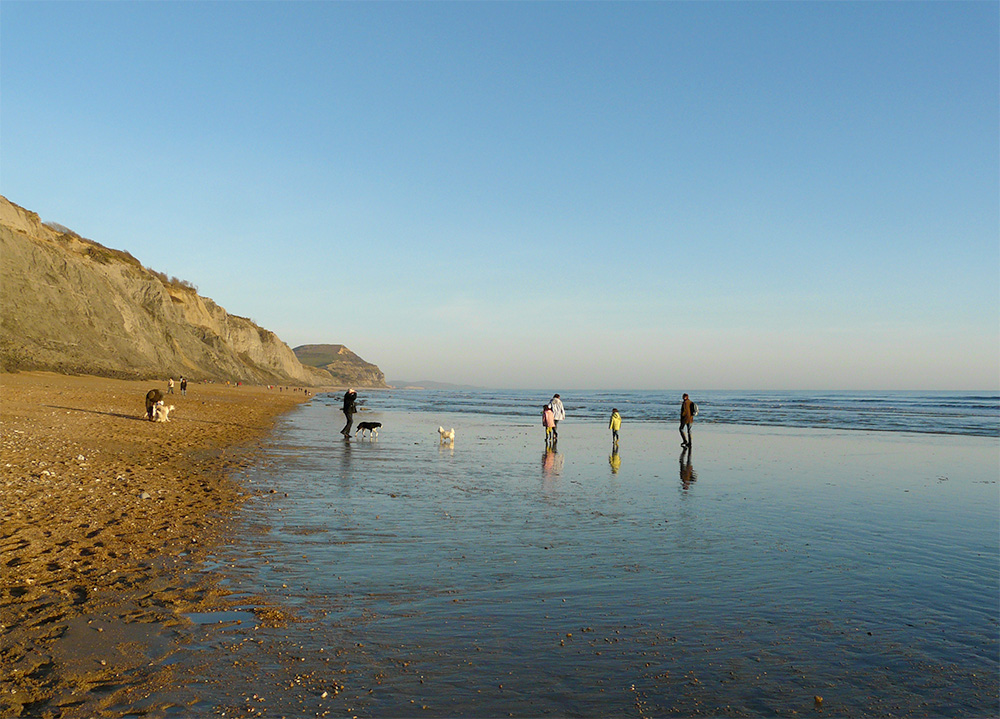 Charmouth east beach at low tide