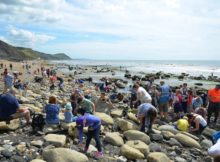 Fossil Hunting Trip on Charmouth Beach