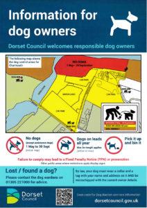 Charmouth beach dog policy