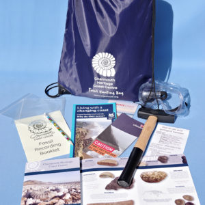 Adult fossil hunting kit