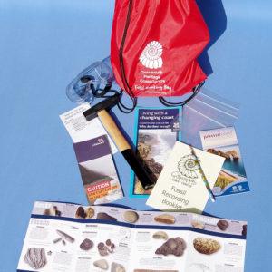 Children's fossil hunting kit