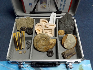 fossil loan box