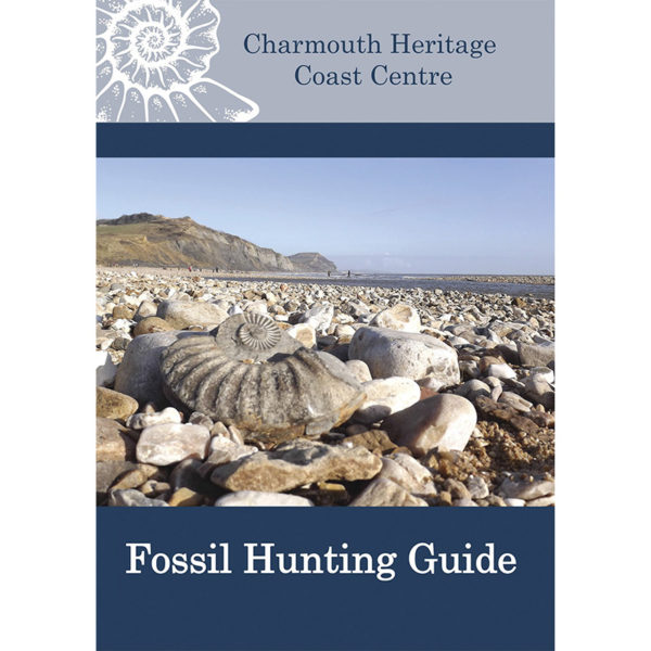 Fossil Hunting Guide