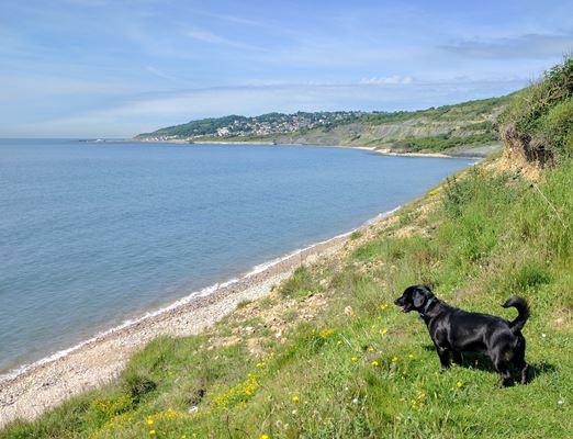 View of Charmouth