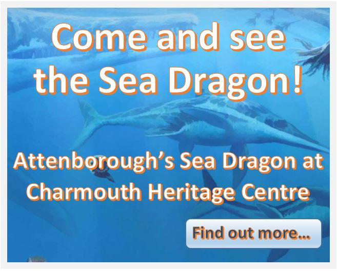 Attenborough Sea Dragon